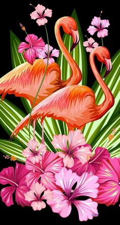 Flower and flamingo Flamingo Painting, Flamingo Decor, Flamingo Pictures, Flamingo Wallpaper, Tropical Art, Iphone Background Wallpaper, Bird Patterns, Photo Wall Collage, Art Drawings Sketches