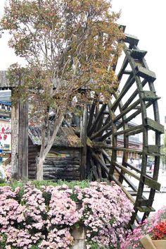 Lijiang-Waterwheel.jpg (827×1240)