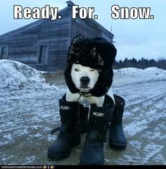 Ready.   For.    Snow. Deanna this reminds me of daisy and nola and u dressing them up.