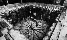 The 'rat utopia' experiment behind JG Ballard's High-Rise | Jesse Olszynko-Gryn | Science | The Guardian