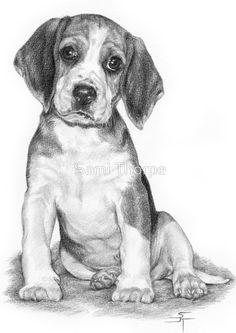 Growing pains by sami thorpe pencil drawings of animals, dog pencil drawing, dog drawings. Dog Pencil Drawing, Pencil Drawings Of Animals, Animal Sketches, Art Drawings Sketches, Cool Drawings, Puppy Drawing, Pencil Art, Beagle Art, Beagle Funny