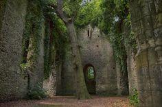 "wanderthewood: ""Ruins of St Mary's Church, East Somerton, Norfolk, England by Chipyluna """