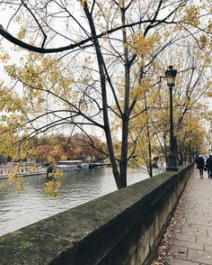 Paris in her greys. #november #seemyparis #MyParis