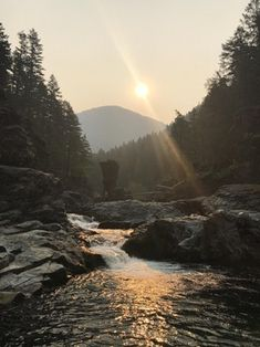 Beautiful, smokey morning at Opal Creek in Oregon. This was last summer during the Eagle Creek fires [OC] [3264x2448] : EarthPorn
