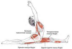 active mūlādhāra / root chakra trikonasana triangle pose