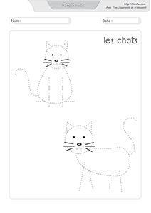 """Résultat de recherche d'images pour """"activités manuelles autour du chat"""""""