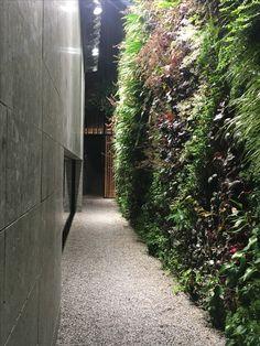 Hotel.Il Sereno.Como.Torno.Greenwall.StoneandWood Villas, Hotels, Gardens, Architecture, Arquitetura, Outdoor Gardens, Villa, Architecture Design, Garden