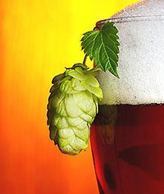 Dry Hopping A Beer More