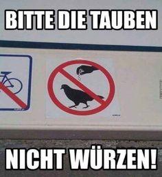 XD Bitte die Tauben nicht würzen