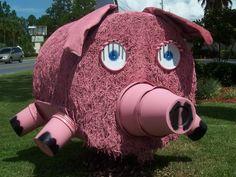 Pig Hay Bale Bauman Chiropractic, Panama City FL www.baumanchiropractic.net
