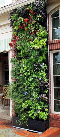 The Aria Living Wall - Friends of Gardening Manitoba