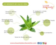 Les bienfaits de l'aloe vera Health Diet, Health And Nutrition, Nutrition Articles, Aloe Vera, Le Psoriasis, Forever Aloe, Forever Living Products, Herbalife, Beauty Routines