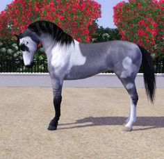 Sims 3 Horses for Sale | Comments