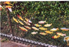 Painted wooden fish attached to fence with twist ties.