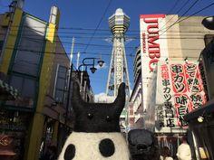 https://flic.kr/p/DUHKn2   GUILTY in Osaka   photo by RYOPPY+AKANE