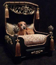 New Luxury Platform Dog Bed. WOW!