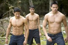 The Twilight Saga: New Moon - Publicity still of Kiowa Gordon, Alex Meraz & Chaske Spencer Twilight Wolf Pack, Saga Twilight, Twilight Quotes, Twilight New Moon, Twilight Movie, Twilight Pictures, Twilight Jacob, Vampire Twilight, Twilight Cast