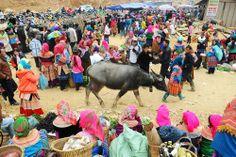 sapa trekking tours: Sapa spring fair