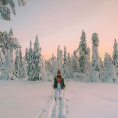 Winter at Levi, Lappi, Finland. Places To Travel, Places To Go, Travel Pics, Lauren Bullen, Vsco, Snowy Day, Winter Pictures, Ski And Snowboard, Adventure Is Out There