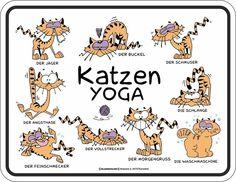 Katzen Sprüche - Yoga - Spruch Blechschild mit 4 Saugnäpfen - Größe 22x17 cm: Amazon.de: Küche & Haushalt