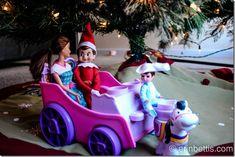 IMG_0615 Family Christmas, Christmas Ornaments, Christmas Traditions, Elf On The Shelf, Shelves, Shelf Ideas, Traditional, Holiday Decor, Fun