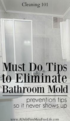 Cleaning | Spring Cleaning | House | Home | Tips | Strategies | Hacks | Shower | Remove Mold | Bathroom | Bath tub