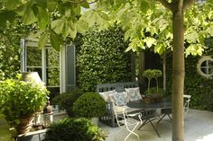 Just green and texture and shape in this tranquil and elegant courtyard garden designed by Isabel Lopez Quesada.