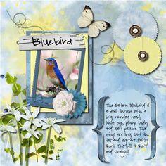 Charlotte Mason nature pages made with Cornflower Blue Digi Scrapbook Kit #homeschool #charlottemason