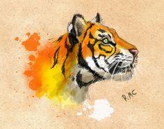 Výsledek obrázku pro tiger sketch