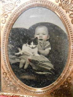 Daguerreotype-6th-Plate-Full-Union-Case-Baby-Girl-with-Kitten