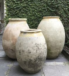 Olive Jars Group B -outside-carriage-way- Antiques de Provence Plant Pots, Potted Plants, Olive Oil Jar, Hudson Furniture, Decks And Porches, Terracotta Pots, Garages, Garden Inspiration, Beautiful Gardens