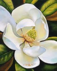 Image result for magnolia grandiflora paintings