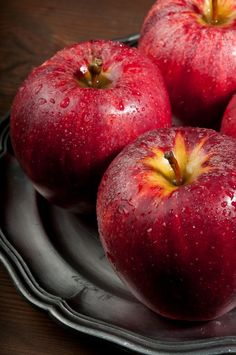 "thelordismylightandmysalvation: "" Apples """