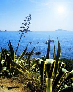 Sardinia - Santa Maria Navarrese - Sea - Beach