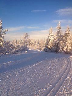 Skiing, Ljøsheim - Norway