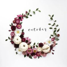 Hello October And hooray for the return of my favourite white pixie pumpkins too. Here's to a good one x Hello October And hooray for the return of my favourite white pixie pumpkins too. Hello October Images, October Pictures, October Quotes, October Poem, Design Creation, October Fall, Happy October, Happy Tuesday, Birthday Wallpaper