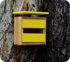Bird houses don't have to be country or kitschy. They can be simple and modern