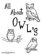 Owl lapbook resources....I loved making our owl lapbook it was such fun and very informative.
