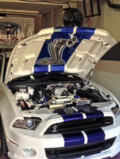 Ford Mustang - I love how when u open the hood there is a Cobra- LIT Shelby Gt 500, Ford Mustang Shelby Gt500, Mustang Cobra, Ac Cobra, Dodge, Modern Muscle Cars, Sweet Cars, Us Cars, Ford Gt