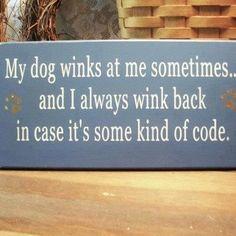 Dog wink:)