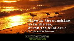 """""""Live in the sunshine, swim the sea, drink the wild air."""""""