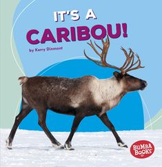 "Read ""It's a Caribou!"" by Kerry Dinmont available from Rakuten Kobo. Read all about caribou and their polar home! Also called reindeer, these magnificent migrators come to life through full. University Of Calgary, Critical Thinking, Social Studies, Nonfiction, Geography, Audiobooks, This Book, Ebooks, This Or That Questions"