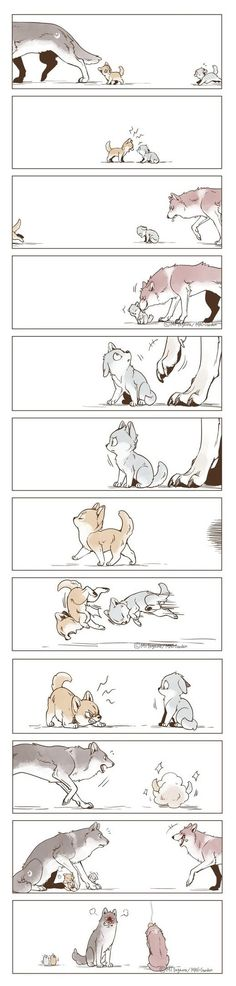 Funny Animal Comics, Cute Cartoon Animals, Cute Comics, Cute Animals, Cute Cartoon Drawings, Animal Drawings, Cartoon Art, Wolf Comics, Wolf Sketch