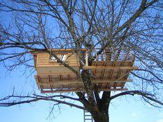 Baumhaus Tegernsee | Baumhaus | Pinterest | Bäume, Seen Und Baumhaus Das Magische Baumhaus Von Baumraum