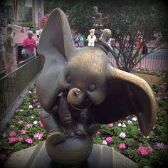 With Dumbo