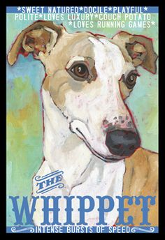 Soulful Whippet - from Ursula Dodge: http://www.ursuladodge.com/2011/whippet2-print/