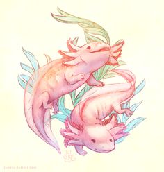 Axolotls sketch thing ~ oh my how I love them Axolotl, Cute Animal Drawings, Cute Drawings, Cute Fantasy Creatures, Creature Drawings, Cute Art, Art Sketches, Art Reference, Fantasy Art