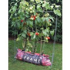 The Growbag Frame