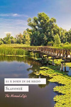 In het meest oostelijke puntje, ver weg van het massa toerisme en de moderne wereld ligt de regio Slavonië. Voor velen waarschijnlijk een onbekende regio, wat begrijpelijk is want grote steden ga je hier niet vinden. Slavonië is een regio waar je naar toe gaat om te genieten van de rust, natuur en de lokale cultuur. Vineyard, River, Outdoor, Outdoors, Vine Yard, Vineyard Vines, Outdoor Games, The Great Outdoors, Rivers