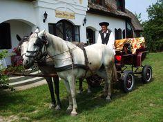Farmhouse in Hungary (Gedeon Tanya panzió, Bugacpuszta)